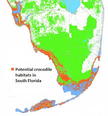 alligators in map living among alligators species profile of the
