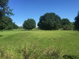 land for sale in vero beach florida lots acreage and real