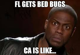 Bed Bug Meme - fl gets bed bugs ca is like meme kevin hart the hell 67064