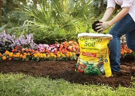 Garden Club Ideas 5 Things To About Dirt Garden Club