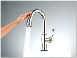 delta cassidy kitchen faucet delta cassidy kitchen faucet reviews ppi