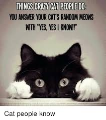 Crazy Cat Memes - things crazy cat people do you answer your cats random meows wth yes