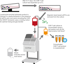 global manufacturing of car t cell therapy molecular therapy