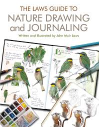 Leaf Dichotomous Key Worksheet 108 Best Nature Journaling Images On Pinterest Animals Draw And