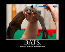 Bat Meme - image 35781 brushie brushie brushie know your meme