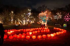illuminated garden returns to ballard park during newport winter