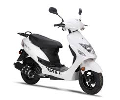 wolf rx50 scooter new scooters 4 less ns4l gainesville fl