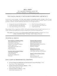 information technology resume sample it job resume sample