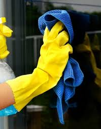 my spotless house cleaning services plano tx