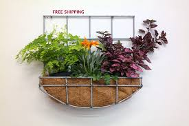 Wall Hanging Planters by Wall Hanging Planter With Curved
