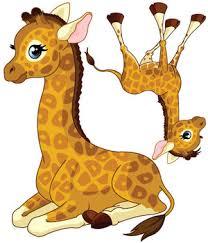 stickers girafe chambre bébé stickers bébé girafe garçon vente stickers animaux de la jungle