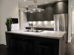 modern kitchen cabinets nyc home act