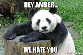 Amber Meme - hey amber we hate you make a meme