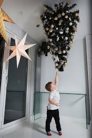Beds That Hang From The Ceiling by Creative Dad Makes Christmas Tree Childproof By Hanging It