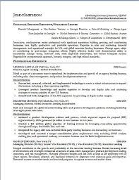 sample resume executive manager executive resume example