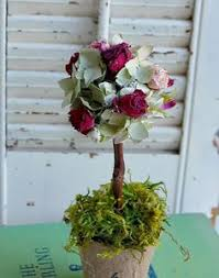 Topiary Balls With Flowers - dried flower topiary with birch log stem weddings for three