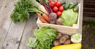 cuisiner les l馮umes autrement astuces culinaires préparez vos légumes autrement défi santé