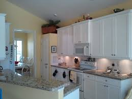 Kitchen Cabinets Salt Lake City Amazing Eagle Flying Proudly On The Lake Copy Advice For Your