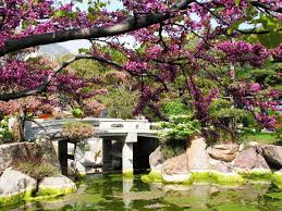 small japanese gardens marissa kay home ideas finest japanese