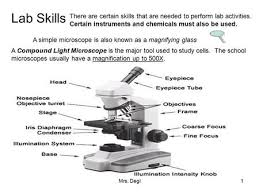 why is a light microscope called a compound microscope practical tips on designing your microscopy experiments ppt download