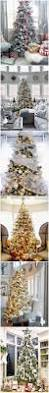 35 Christmas Tree Decoration Ideas by 5555 Best Christmas Tree Images On Pinterest Christmas Tree