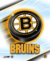myLot Photos - logo of boston BRUINS
