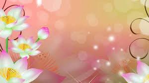 Cute Flower Wallpapers - flower purple green flowers pink basket photography hanging