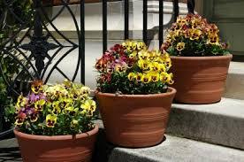 Garden Pots Ideas Seasonal Container Garden Ideas Lovetoknow
