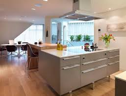kitchen classice wooden furniture in kitchen has granite island