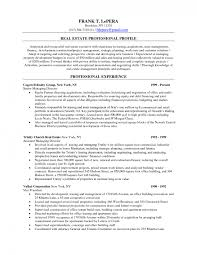 real estate sales and leasing agent resume