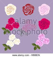 rose tattoo cartoon stock vector art u0026 illustration vector image