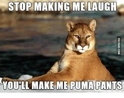 Make Me Laugh Meme - 25 best memes about you make me laugh meme you make me laugh memes