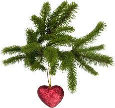 christmas tree five isolated stock photo by nobacks com