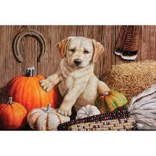 thanksgiving doormat thanksgiving outdoor door mats you ll wayfair