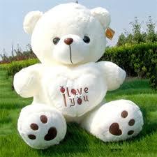 big teddy 50cm large big teddy soft plush toys