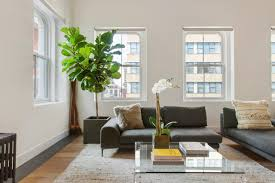 12 living room ideas for a grey sectional hgtv s decorating buy a houseplant