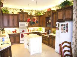 Paint Or Reface Kitchen Cabinets Cost To Refinish Kitchen Cabinets U2013 Subscribed Me