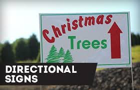 signs tree teck