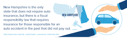 New Hampshire cheap travel insurance images Auto owners car insurance review png
