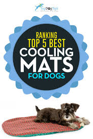 Best Dog Bed For Chewers Top 10 Best Cooling Mat For Dogs To Beat Summer Heat 2017 Round Up
