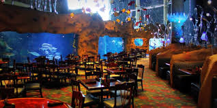 wedding venues in denver downtown aquarium denver weddings get prices for wedding venues