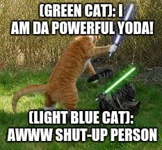 Stupid Cat Meme - stupid cats imgflip
