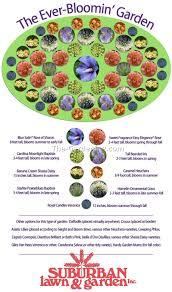 perennial flower garden designs ideas best idea garden