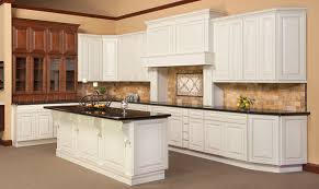 Detroit Cabinets By New Design Kitchen Cabinets Detroit MI - Birch kitchen cabinets