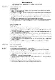 resume templates administrative coordinator ii salary comparison sales coordinator resume sles velvet jobs