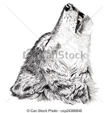 eps vector of wolf howls sketch vector portrait of angry wolf