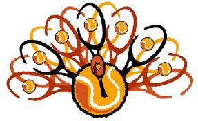 thanksgiving power tennis at tcc ncc