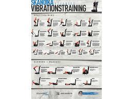 Esszimmerst Le Neu Ebay Skandika übungsposter Studio Vibration Plate Din A1
