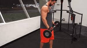 Best Forearm - forearm workout best forearm exercises to reach popeye status
