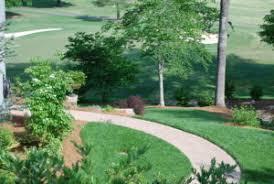 turf and ornamental care davidson landscape nursery